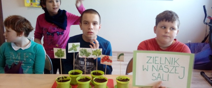 Poznajemy zioła